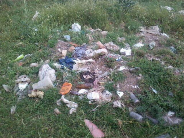 активност мапирања, отпад поред пута