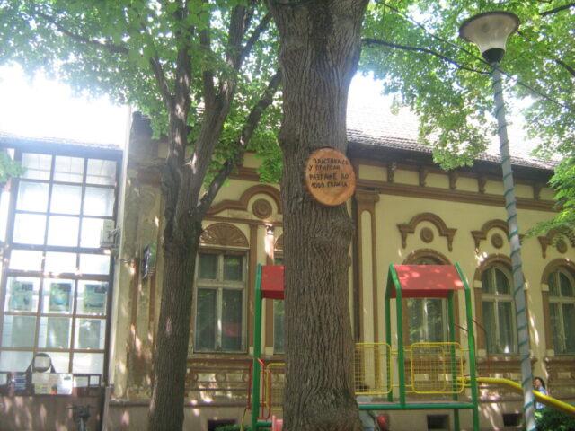 Поруке о заштити животне средине на дрвећу парка