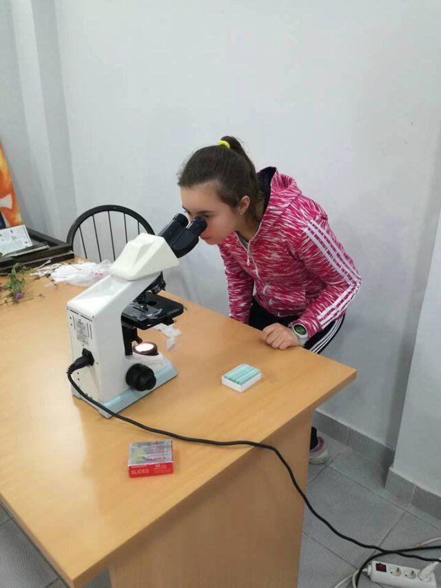 Теренски рад - микроскопирање